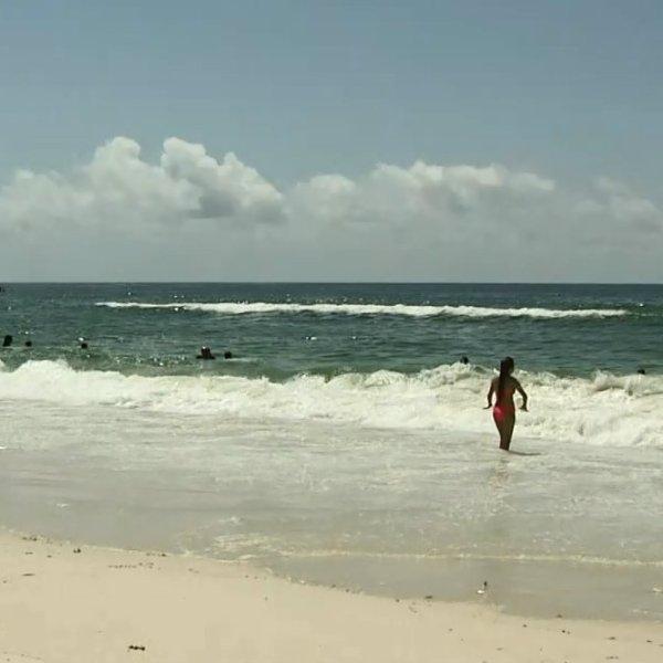 Gulf Shores beach_14721