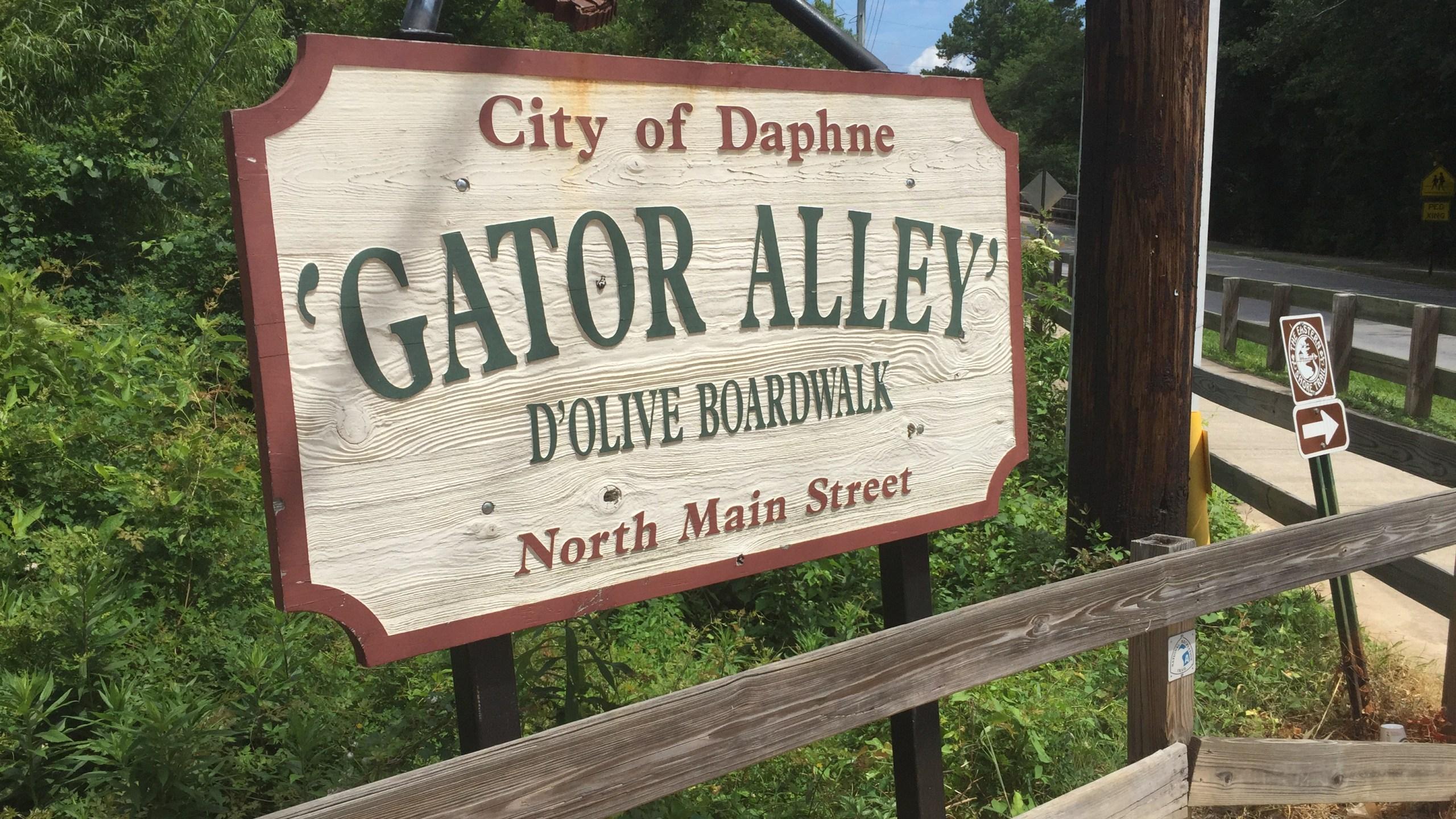 Gator Alley Daphne Alabama_9969
