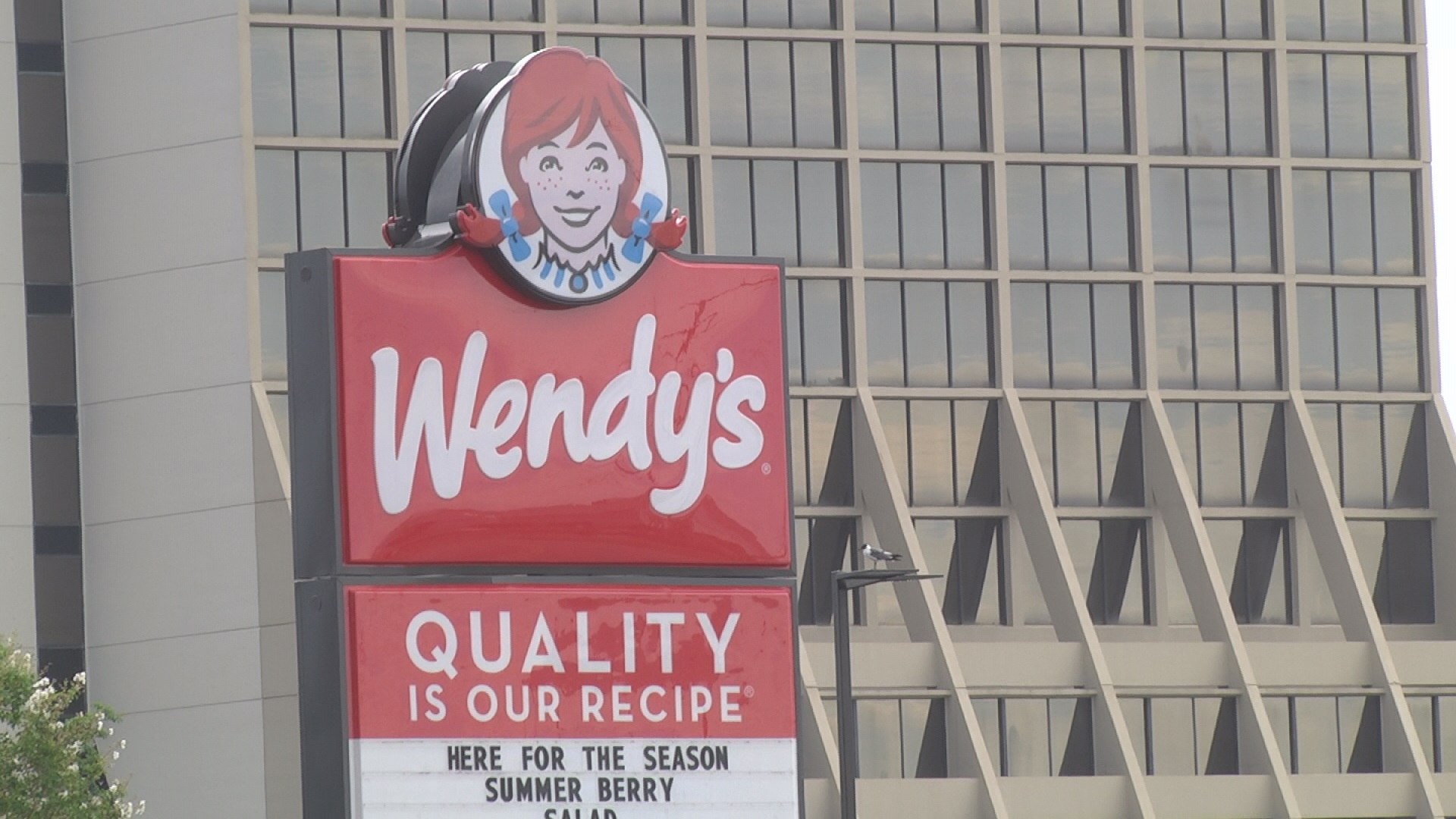 Wendy's pic1_219649