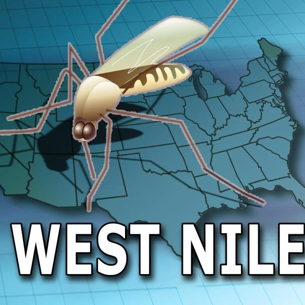 West Nile Virus_200486