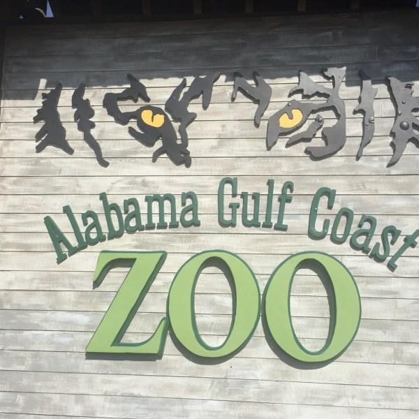 Alabama Gulf Coast Zoo_284886