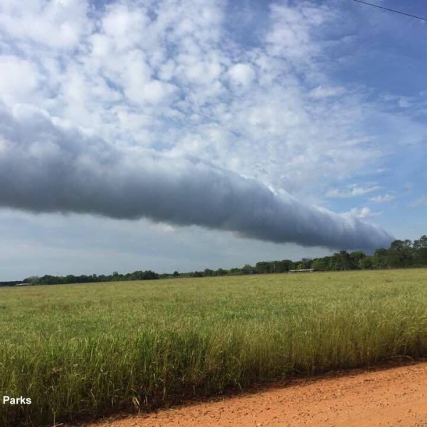Roll Cloud by Jeremy Parks_335581