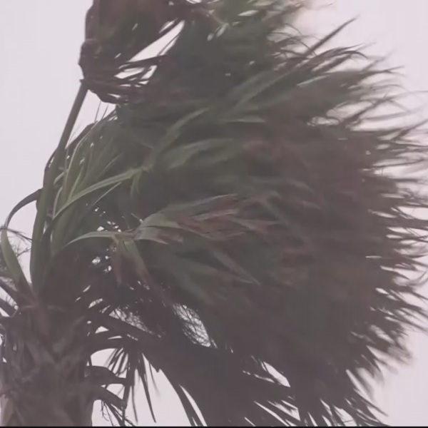 hurricane-matthew_256160