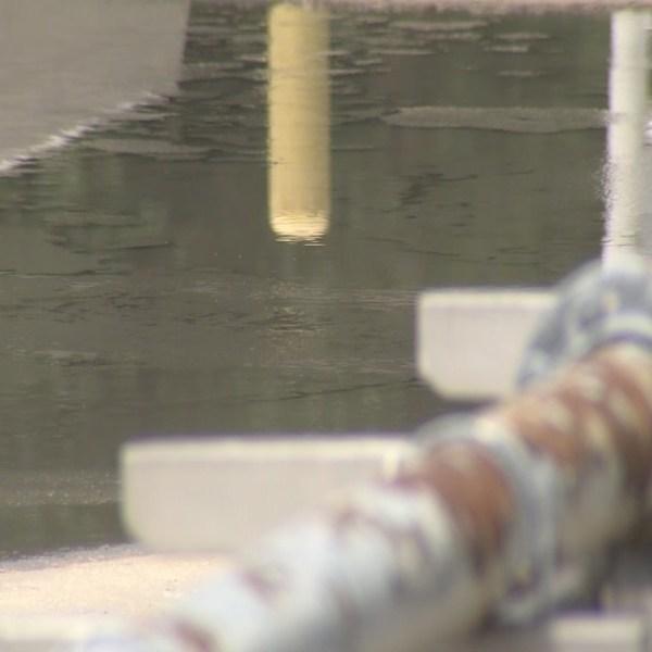 daphne sewage leak_399450