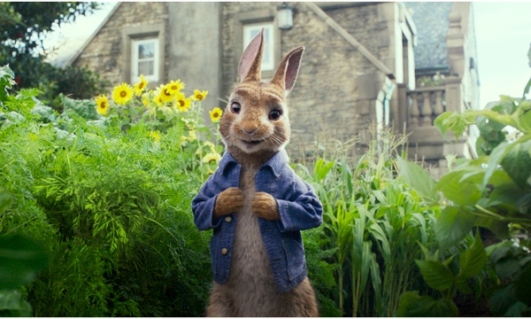 Peter Rabbit Allergy Backlash_1518469666606