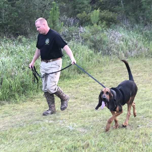 missing bloodhound 1_1526609584304.jpg.jpg