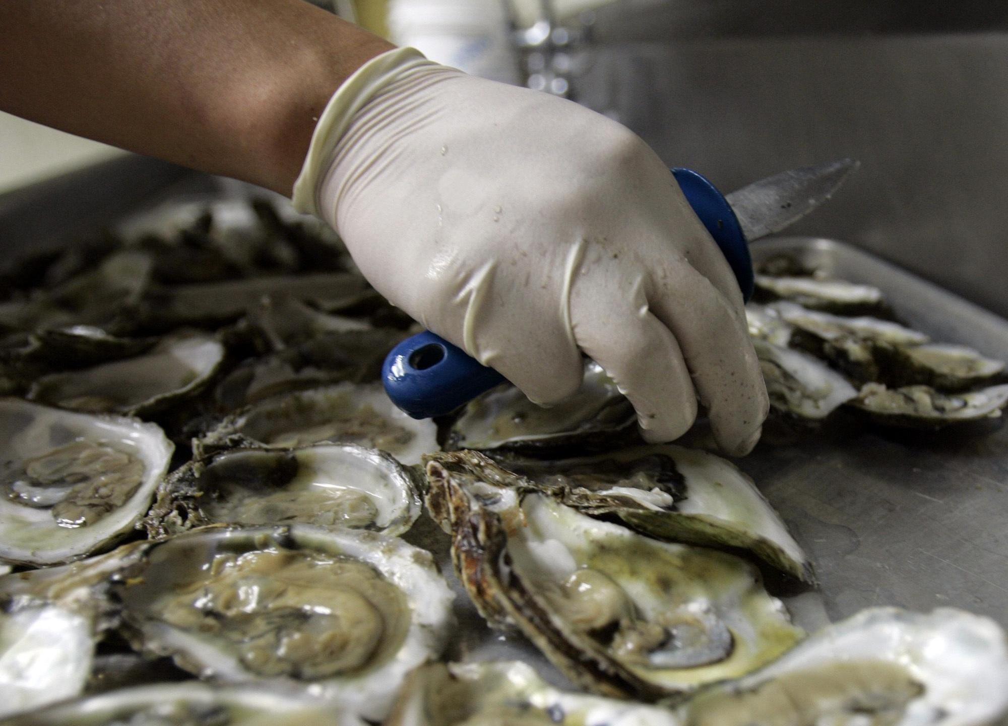Oyster harvest season starts on Oct. 4 in Alabama