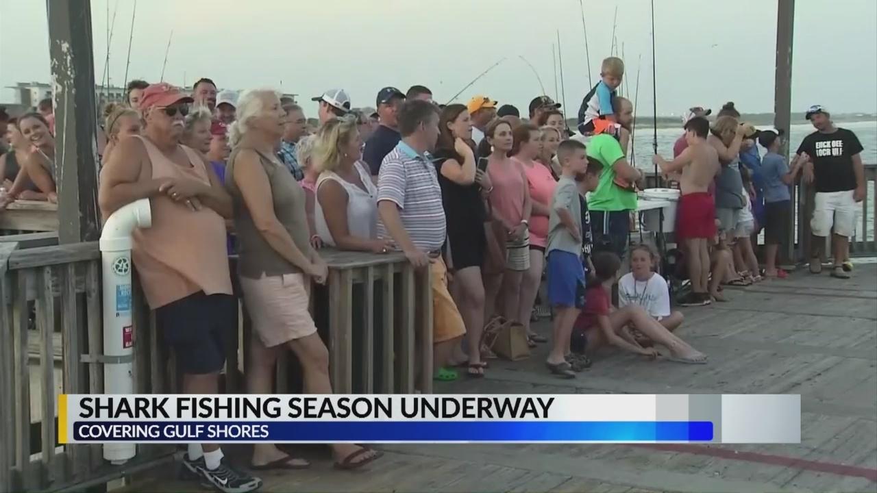 Shark_fishing_on_Gulf_State_Park_Fishing_0_20180620154309