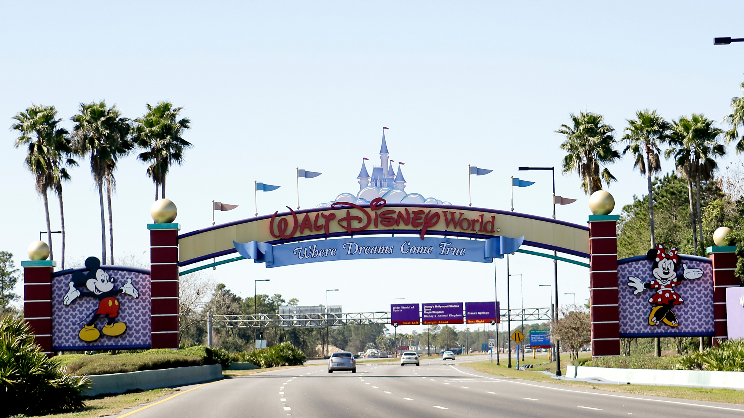 Disney_Lyft_Drivers_Union_22328-159532.jpg71124034