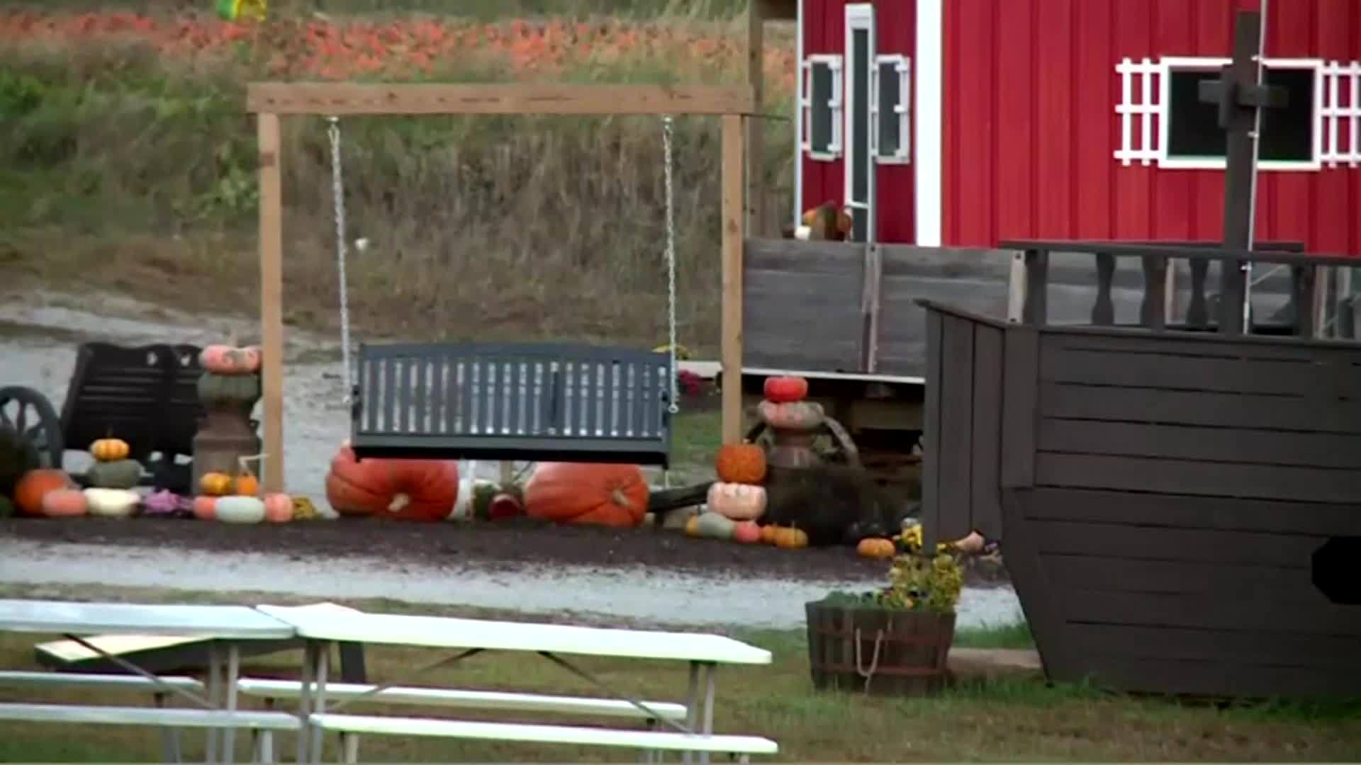 Toddler dies of trauma after bounce pad blows away