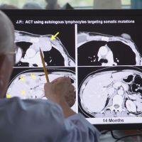 breast cancer research_1528144011422.jpg.jpg