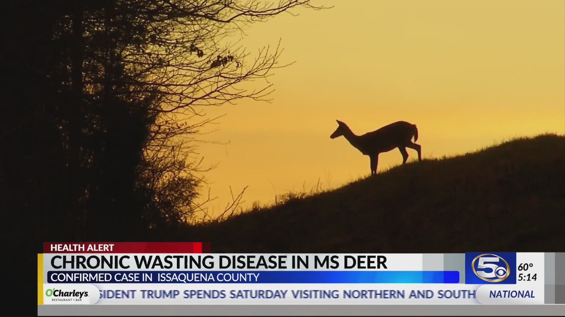 Chronic Wasting Disease close to Alabama