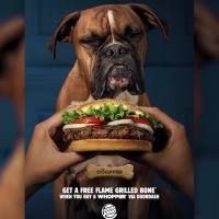 VIDEO: Burger King offers 'Dogpper' with delivery
