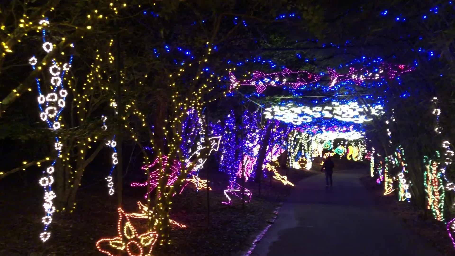 VIDEO: Clark-Shaw Magnet Jazz Band performs at Bellingrath's 'Magic Christmas in Lights'