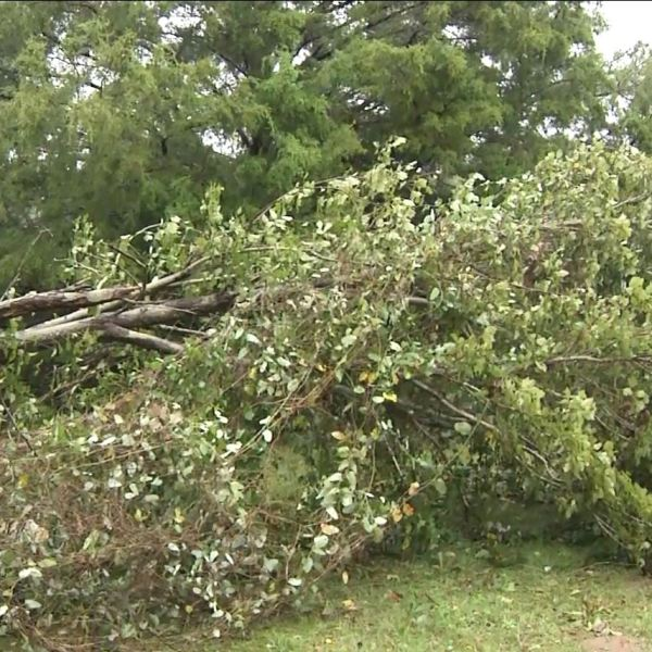 storm damage problem_1541180103146.JPG.jpg