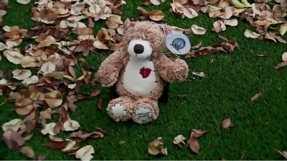Toy bear filled with ashes given as accidental gift