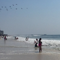 Gulf Shores beaches_1547070801509.jpg.jpg