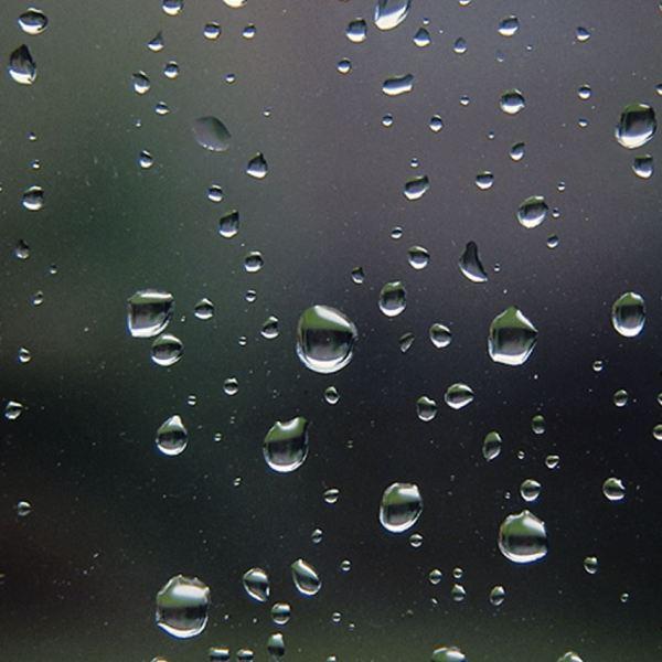 rain drops_1547672609761.jpg.jpg
