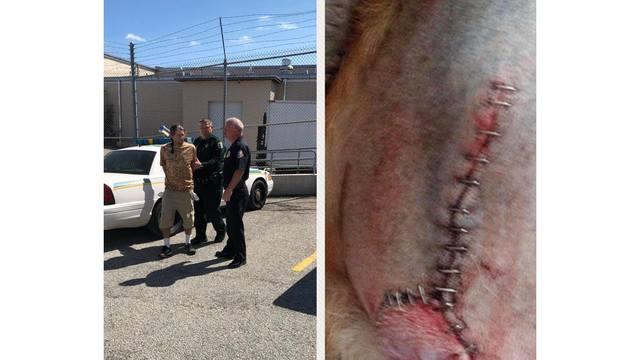 Brevard County groomer arrest_1551196059035.jpg_74999786_ver1.0_640_360 (1)_1551208003641.jpg.jpg