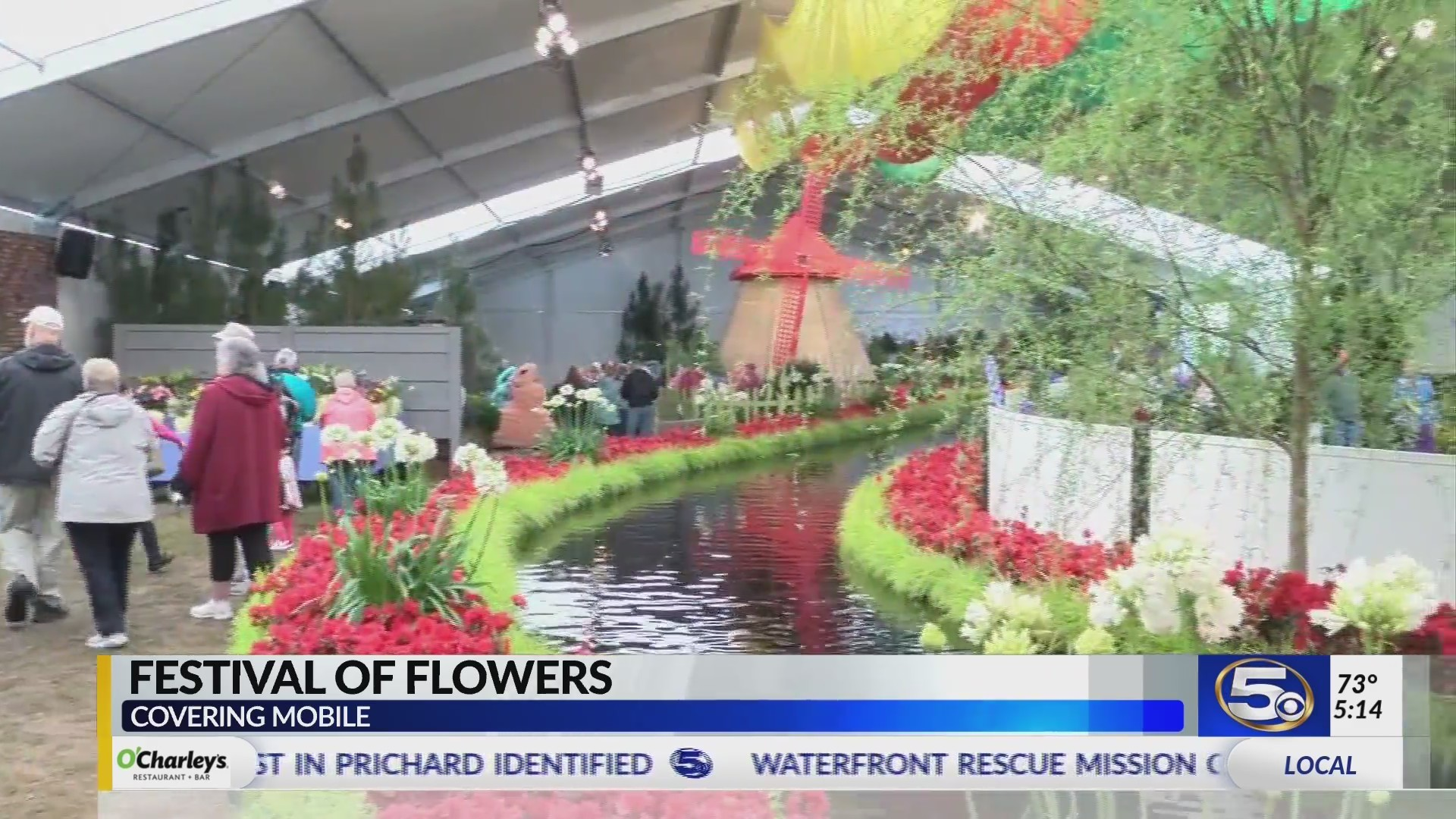 "VIDEO: Festival of Flowers one of the south's ""Top 20 Events"""