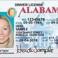 alabama driver license_1553891320154.JPG.jpg