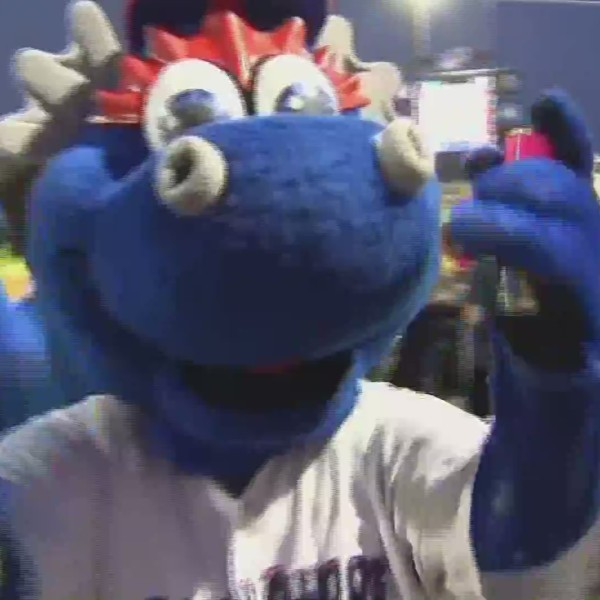 Blue Wahoos Day in the Life