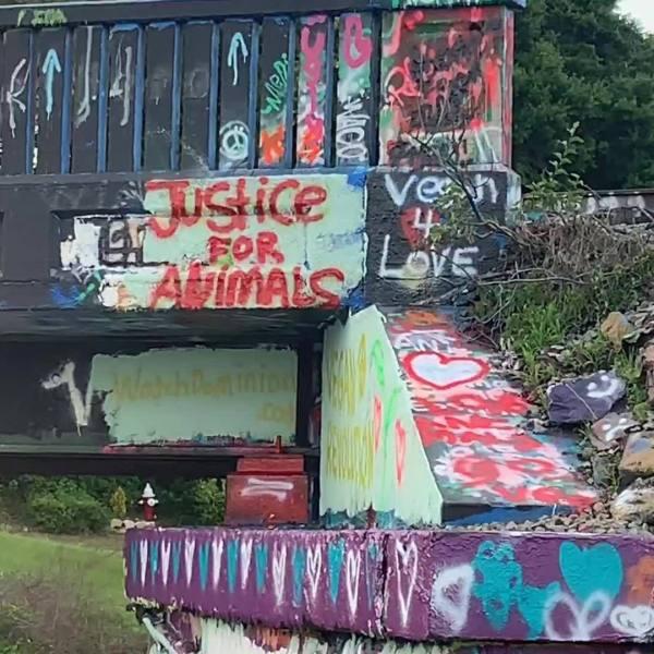 The Graffiti Bridge goes Vegan