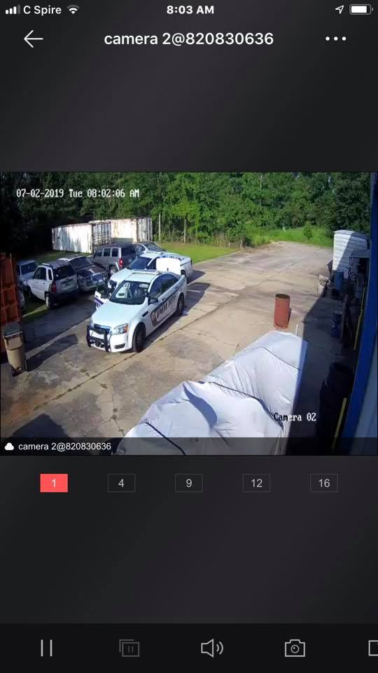 Theft caught on camera in Theodore