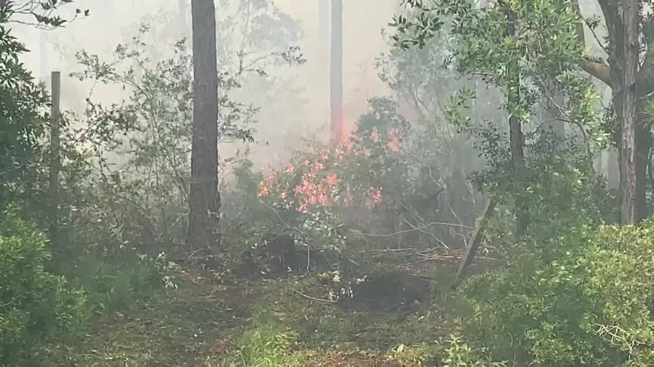 Five Mile Swamp Fire jpg?w=1280.