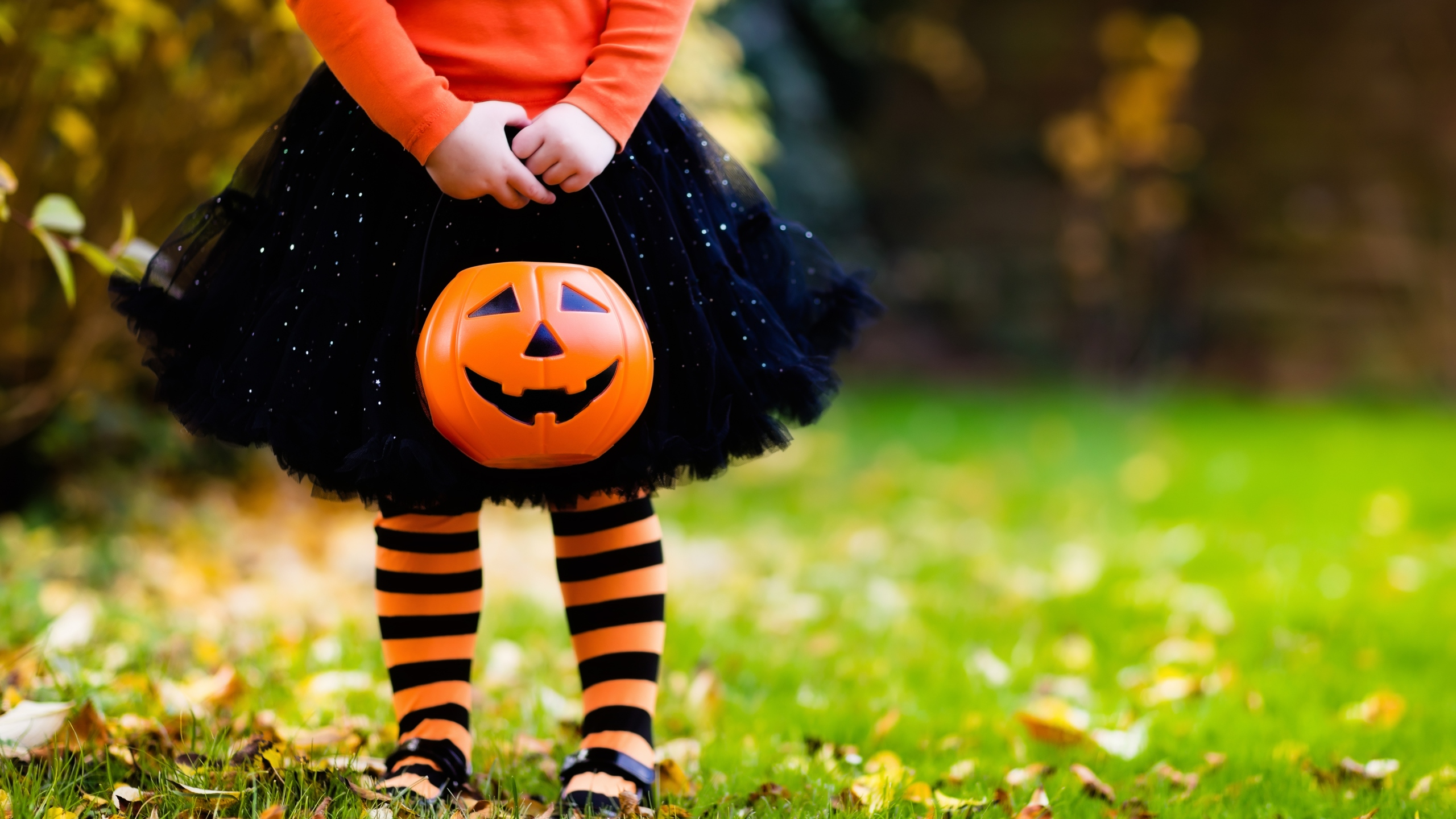 Gulf Coast Halloween 2020 WKRG | Halloween events around the Gulf Coast